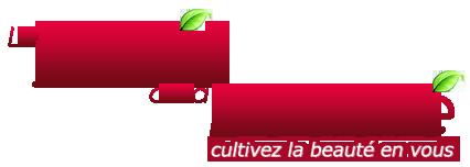 logo ljdlb